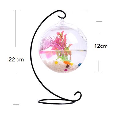 bể cá mini giá treo c