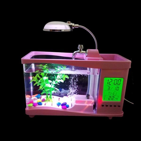 bể cá mini có đèn led